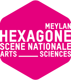LOGO_HEXAGONE