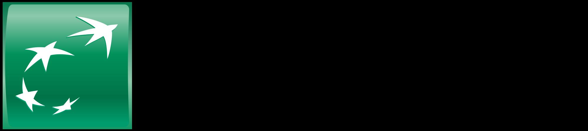 61,1 logo BNP